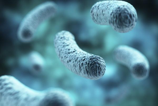 Legionnaires' disease | Experienced Legionnaires Lawyer Elliot Olsen | Siegel Brill Injury Law | Legionnaires' Attorney