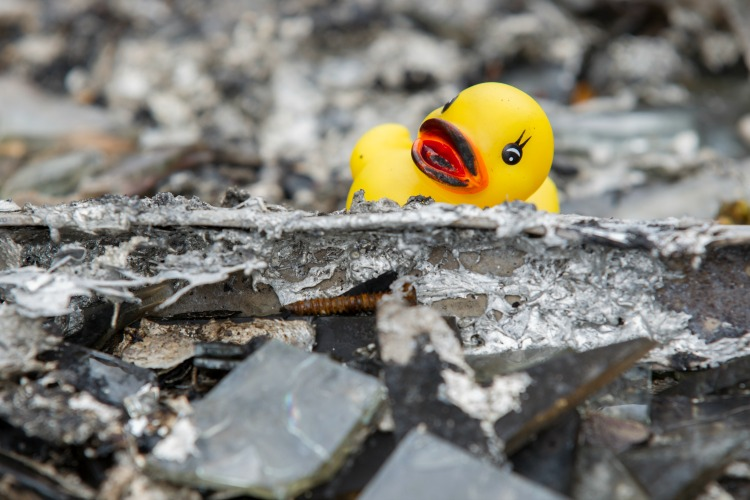 Yellow Rubber Duck in the rubble following a house fire