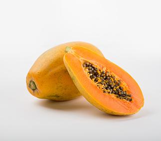 Maradol Papaya CDC, Salmonella Outbreak