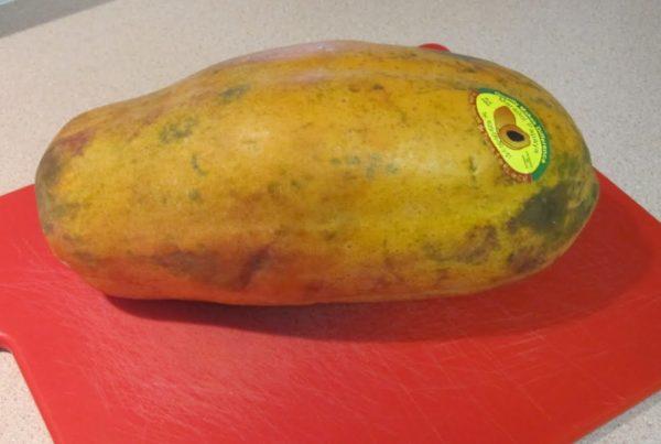 Maradol papayas blamed for Salmonella outbreak