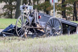Three children killed after family's horse-drawn buggy is hit in central Michigan.