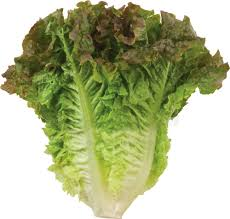 Shiga-toxin E. coli outbreak linked to romaine lettuce.