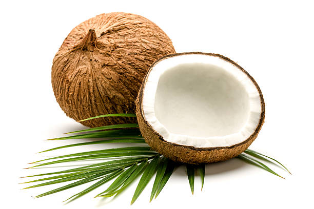 Dried coconut linked to Salmonella outbreak