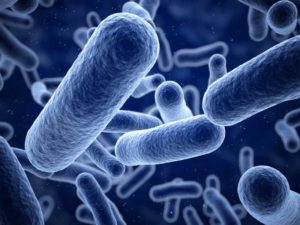 Foodborne diseases: Listeria
