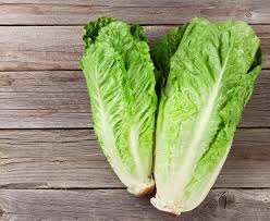 E. coli-tainted romaine lettuce