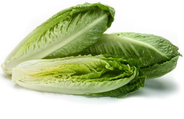 contaminated romaine