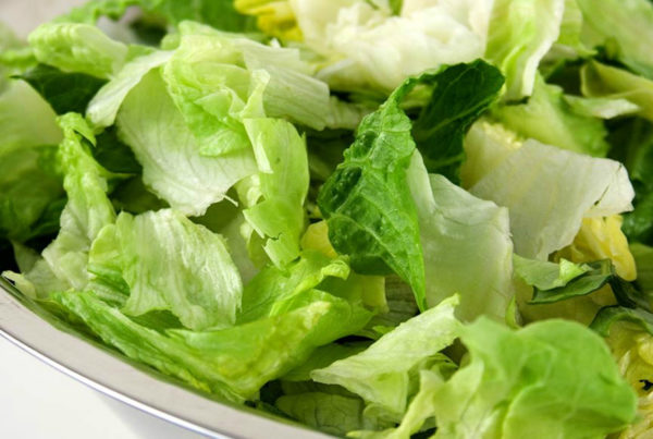 contaminated romaine lettuce