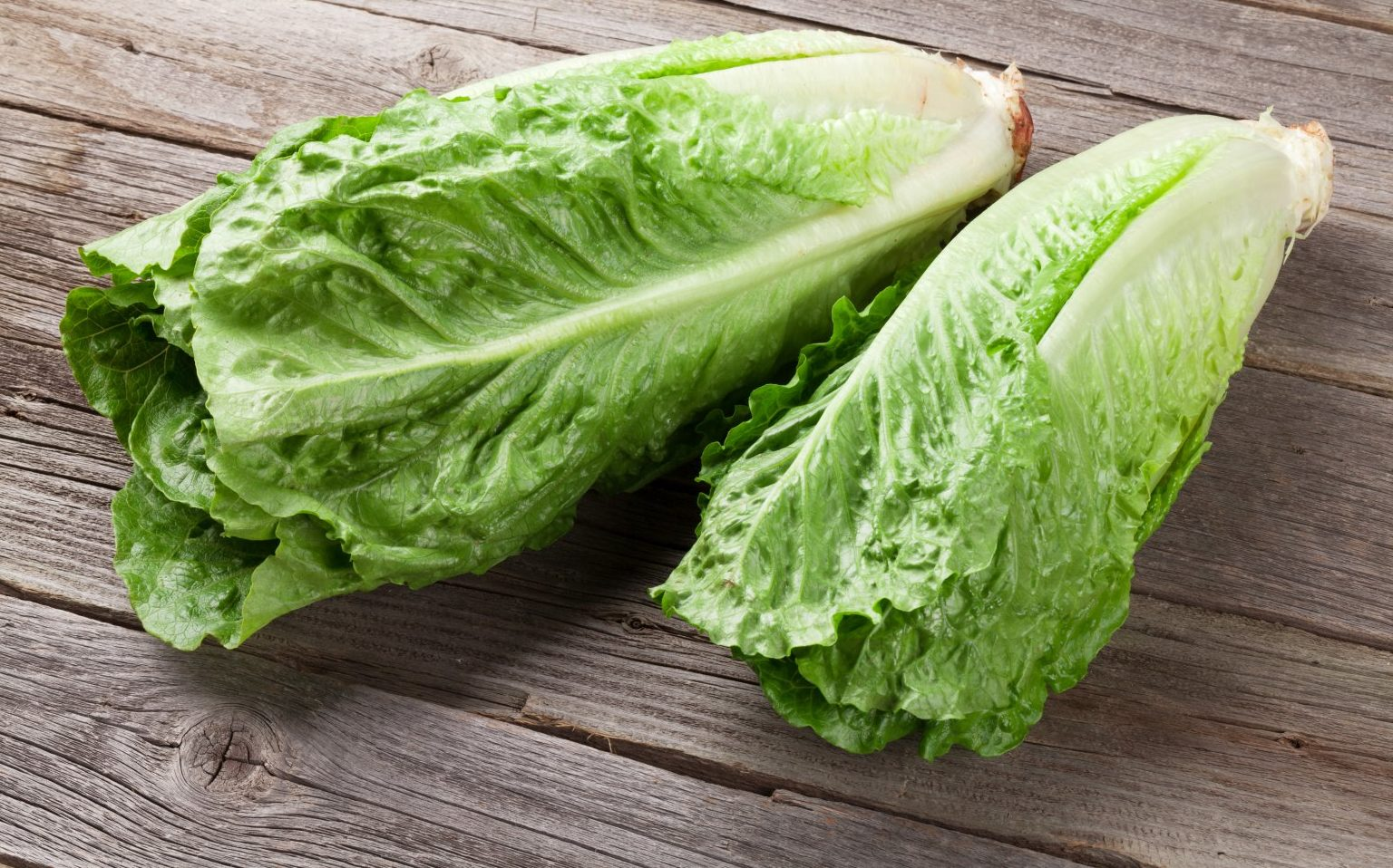 Romaine lettuce E. coli warning expands to include all types from Yuma