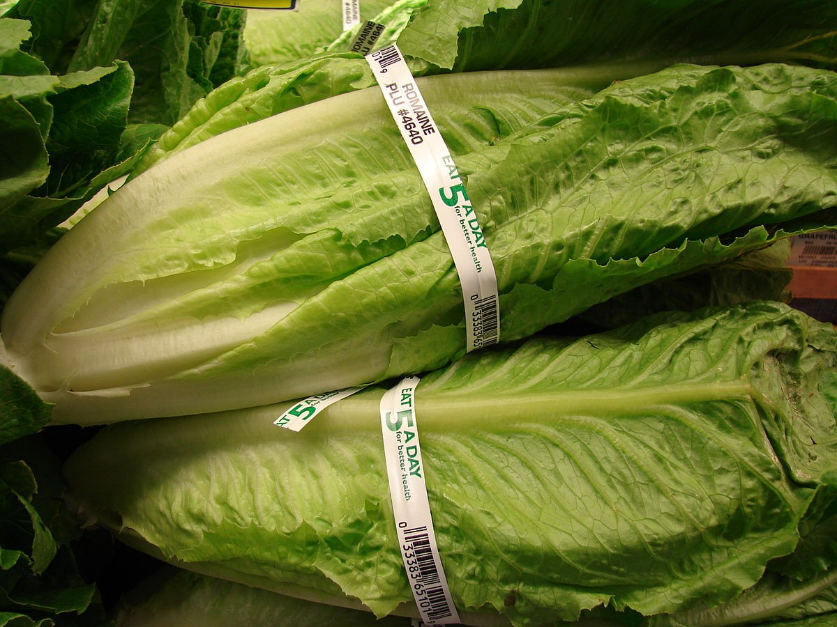 Tainted romaine E. coli outbreak grows; death reported