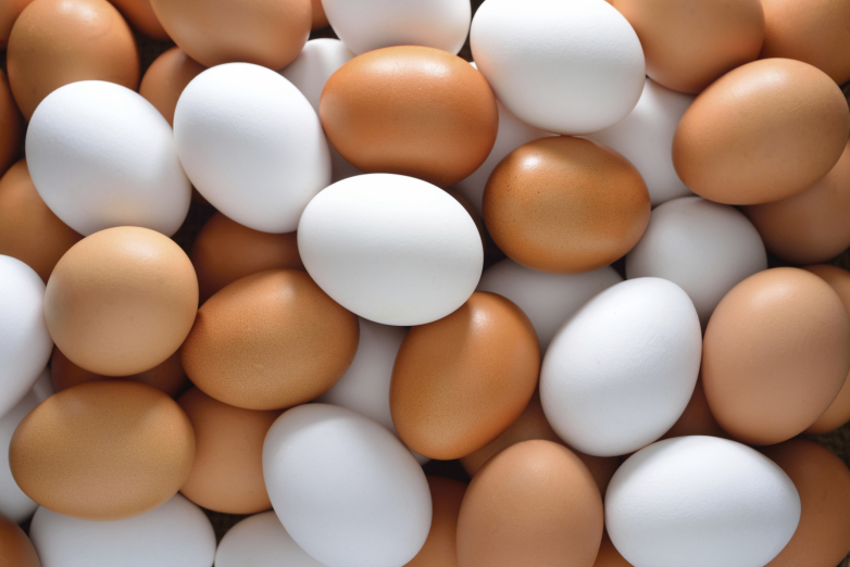 CDC tips on how to avoid Salmonella from eggs