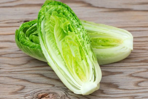 Yuma-grown romaine lettuce