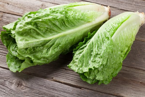 Yuma-grown romaine