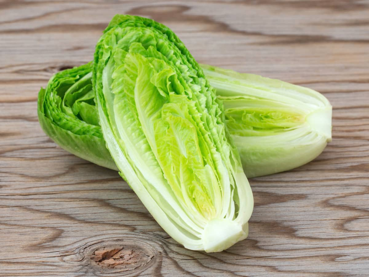 Tainted romaine lettuce claims four more lives