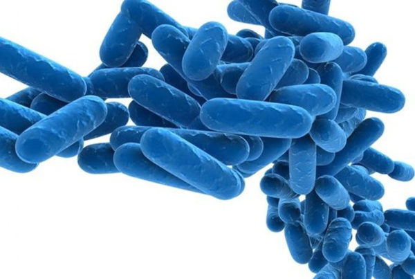 Brooklyn Methodist Hospital might be Legionnaires source