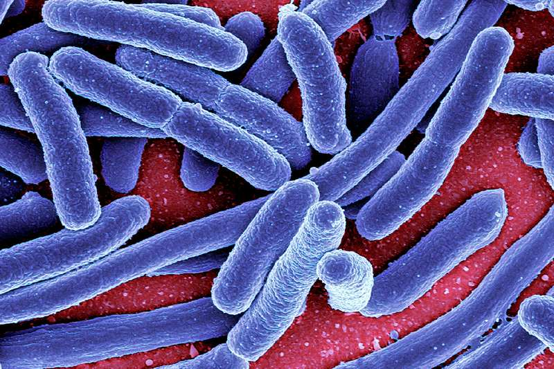Mystery outbreak grows: 96 ill, 11 hospitalized